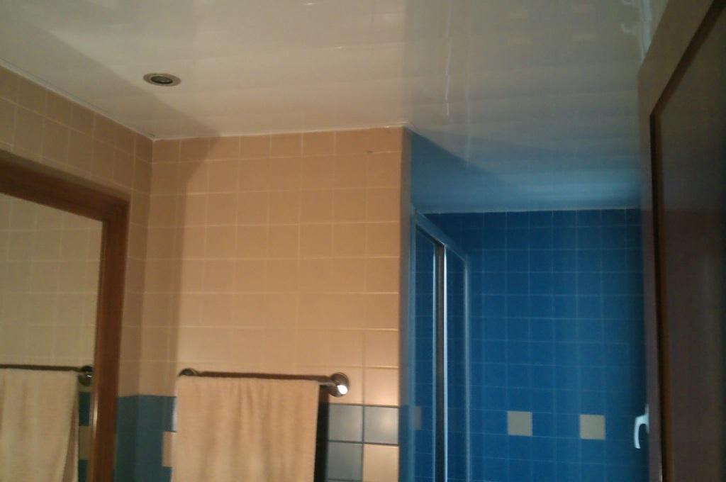 Foto techo baño