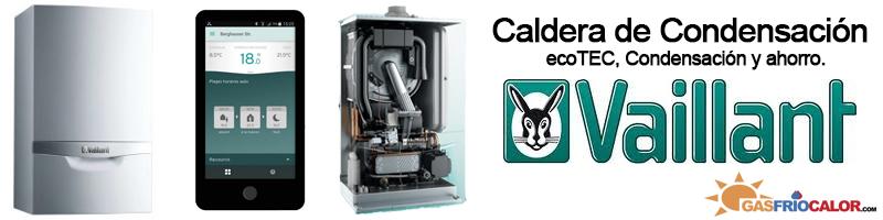 Precio Caldera Vaillant ecoTEC plus VMW ES 246/5-5