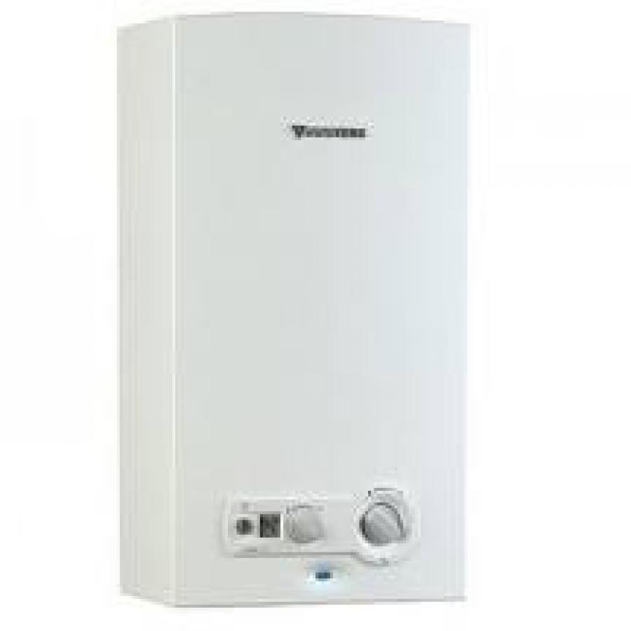 ¿Termo eléctrico o calentador a gas? (II)