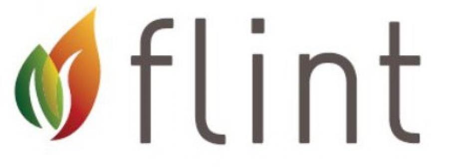 Estufas de Pellets Flint. El mejor Precio en Venta de Estufas.