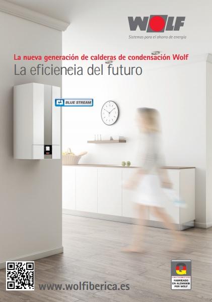 Catalogo comercial Wolf CGB-2