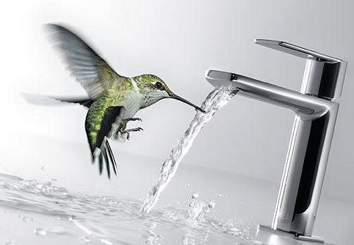 colibri tres